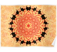 Peach and Black Kaleidoscope Mandala Poster