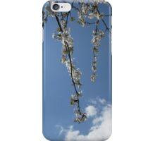 Summer Skies  iPhone Case/Skin