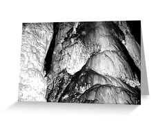 Abercrombie Caves.1 Greeting Card