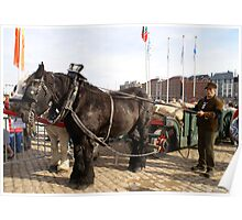 Antwerp - Transport of Grainsacks Poster