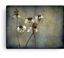 Remains of the Day Canvas Print