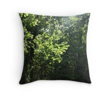 Peace and Tranquillity. Throw Pillow