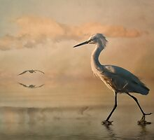The Beachcomber by Tarrby