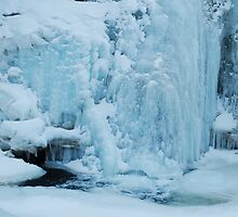 Falling Frozen by Jason D. Laderoute