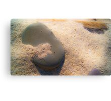 Sand and Rock #1 Canvas Print