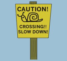 Snail Crossing by Paul Rees-Jones