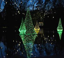 Christmas Reflections by cclaude