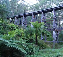 Noojee Trestle Bridge by Lindsay Knowles