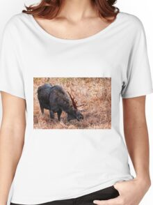 Bull Moose - Algonquin Park, Ontario Women's Relaxed Fit T-Shirt