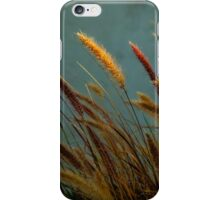 Willows iPhone Case/Skin