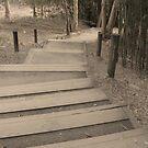 steps by xXDarkAngelXx