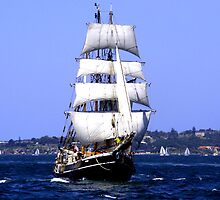 To Sail by Varinia   - Globalphotos