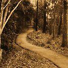 path by xXDarkAngelXx