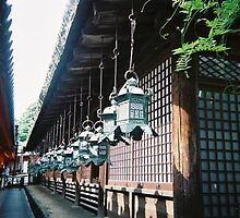 Alleyway between shrines in Nara by satsumagirl