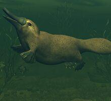 Platypus by Walter Colvin