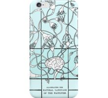 Reason (Neural Network) (Color) iPhone Case/Skin