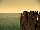 Pier by Richard Owen