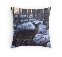 spring whitetail doe Throw Pillow