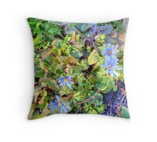 Anemone blands HDR Throw Pillow