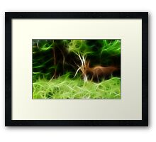 Wildlife Framed Print