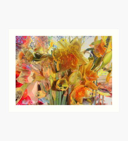 Daffodils HDR Art Print
