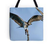 Osprey - Ottawa, Ontario Tote Bag