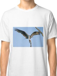 Osprey - Ottawa, Ontario Classic T-Shirt