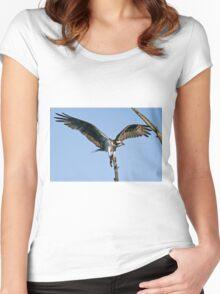 Osprey - Ottawa, Ontario Women's Fitted Scoop T-Shirt