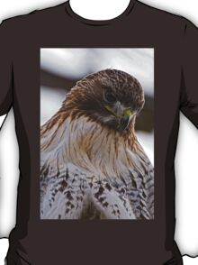 Red Tailed Hawk Portrait - Presqu'ile Park T-Shirt