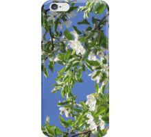 kisses of flowers iPhone Case/Skin