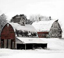 South Dakota Farm by BarnArtandMore