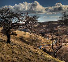 Dark Peak by Andy Harris