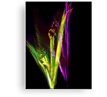 Fire-flower Canvas Print