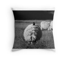 Hitch a ride Throw Pillow