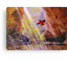 A fleeting thought Canvas Print