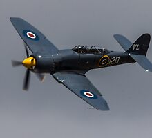 Sea Fury by Kevin Tappenden