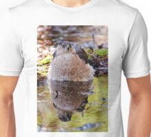 Coopers Hawk - Ottawa, Ontario Unisex T-Shirt