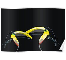 Toucans are Better Than One Poster