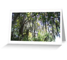 mossy Greeting Card