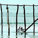 """On Ya Bike"" by Karen Cougan"