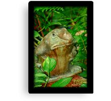 PSSST - OVER HERE Canvas Print