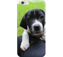 sweet pooch iPhone Case/Skin