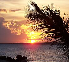 sunset over sumner point, rum cay, bahamas by drose
