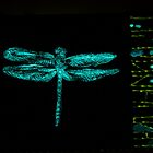 I AM DRAGONFLY by WENDY BANDURSKI-MILLER
