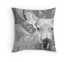 Dandelion Delight - Mule Deer Throw Pillow