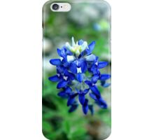 texas bluebonnet iPhone Case/Skin