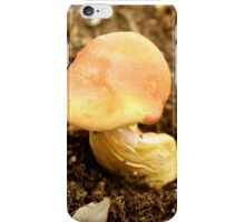 orange/red mushroom iPhone Case/Skin