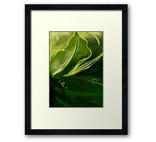 Self-reflecting leaf Framed Print
