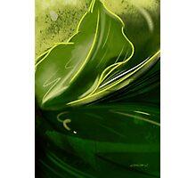 Self-reflecting leaf Photographic Print