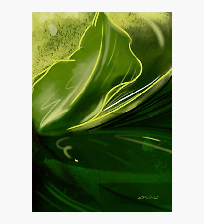 Self-reflecting leaf Photographic Print